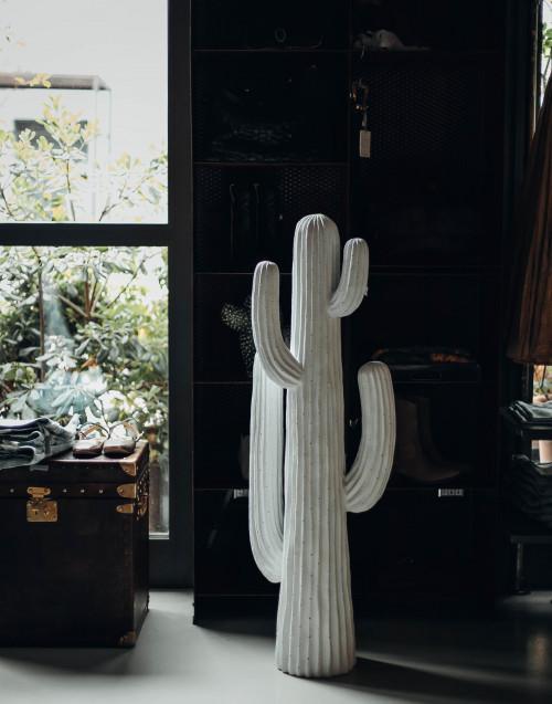 White XXL cactus