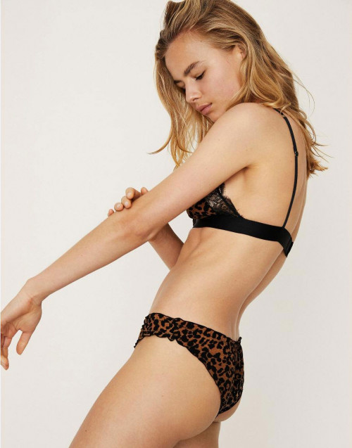 Leopard Lola Brief