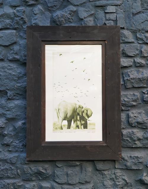 Quadro elefante con cornice in legno
