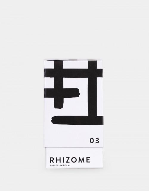 Rhizome 03