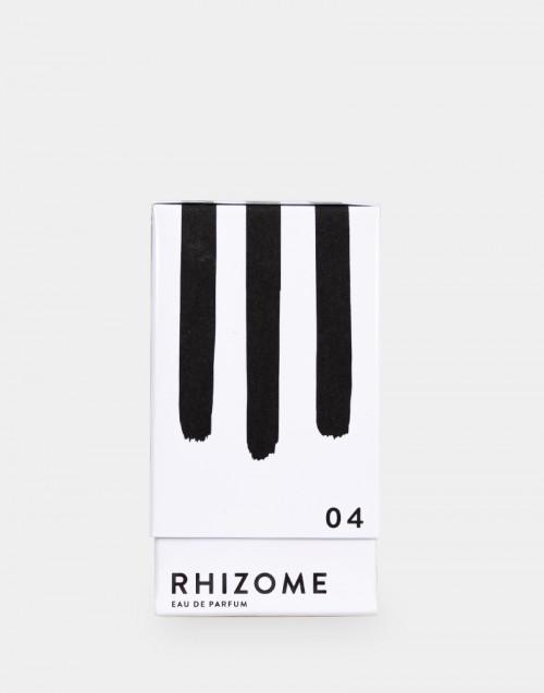 Rhizome 04